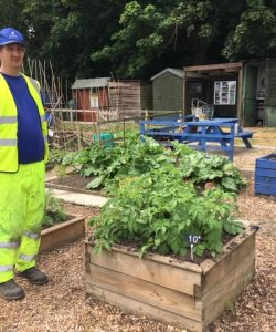 An image of a man standing next to plants at Autism at Kingwood's Henley Allotment